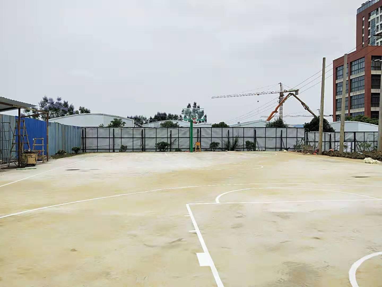柳东篮球场划线