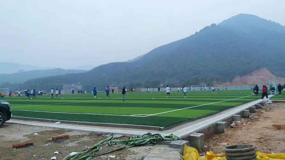 贺州足球训练基地人造草