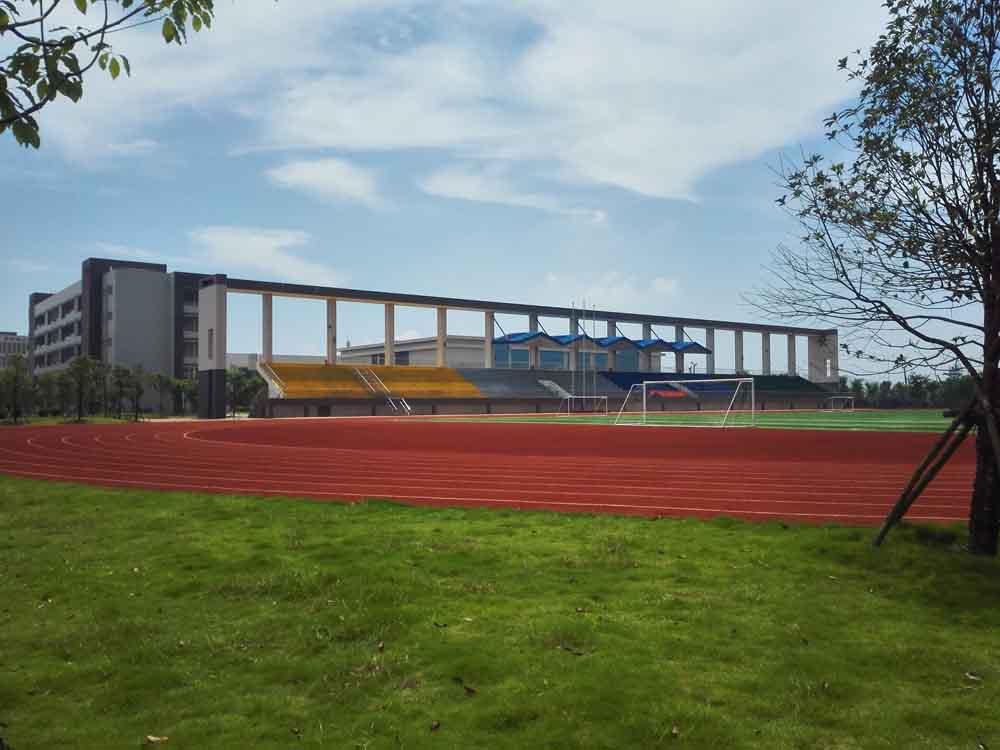 柳州市第二中学足球场人造草