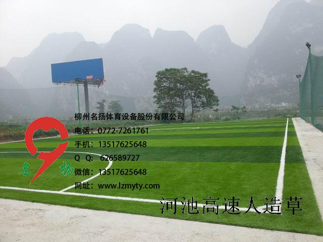 河池七人制足球场人造草坪