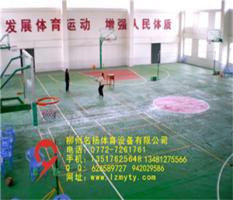 桂林资源硅pu塑胶球场体育馆案例