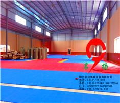 柳州巡警队pvc运动地板