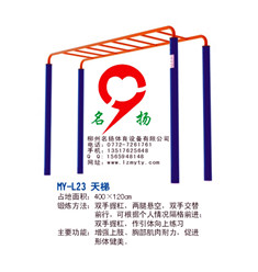 柳州柳城健身器材天梯