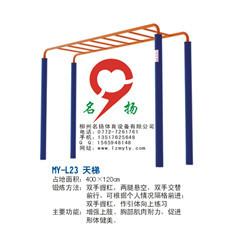 天梯的使用方法与功能