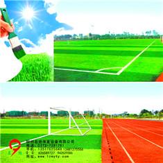 广西北流市人造草坪厂家提供