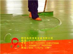 广西塑胶跑道/塑胶球场厂家直销案例图