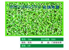广西柳州名扬体育厂家直销人造草