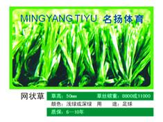 广西桂林市叠彩区厂家提供人造草 网状草图片及价格