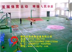 硅pu塑胶球场特点
