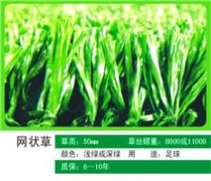 人造草坪材料-人造草坪施工-名扬体育
