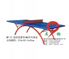 广西北流体育器材厂家批发-彩虹SMC乒乓球桌