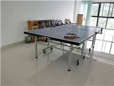 柳州龙潭小区家庭自用乒乓球桌