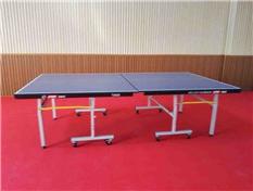巡警支队训练馆折叠式乒乓球桌