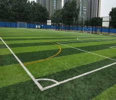 体育中心人造草足球场回访