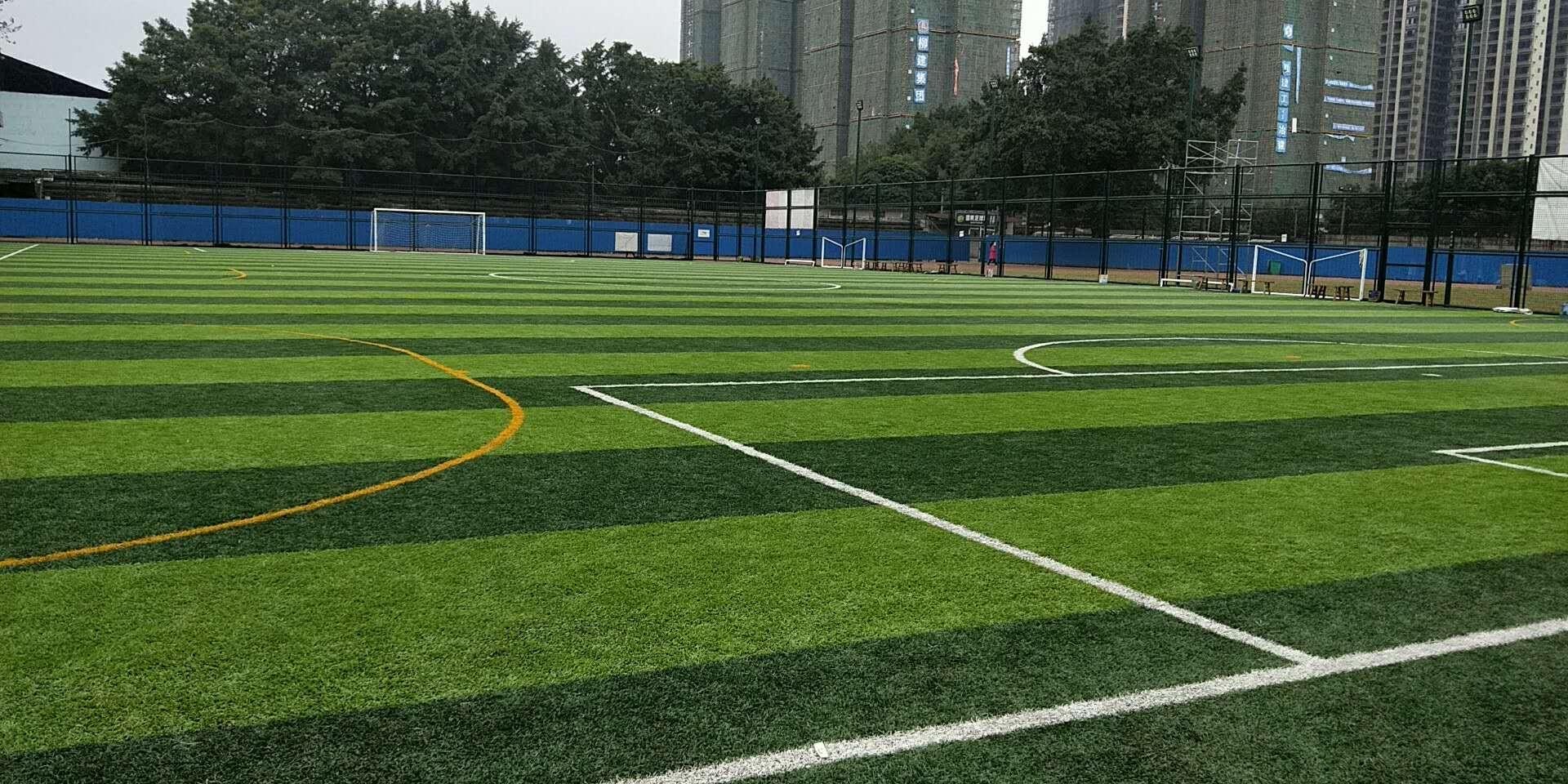 人工草坪价格-人造草批发-幼儿园人造草-名扬体育